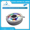 Stainless Steel Under Water Swimming Fountain LED Light