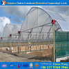 2017 Multispan Hydreoponic Film Green House for Strawberry