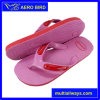 New Popular PE Flip Flops Footwear for Women (MT14006)