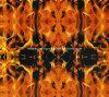 Skull Water Transfer Printing Films (CY-163A)