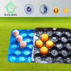 Made in China Food Grade Size Customized Fruit and Vegetable Packaging Plastic Trays