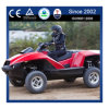 Hot Summer Selling Personal Commercial All Terrain Vehicle