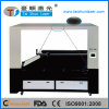 CCD Recognition Fabric Applique Double Head Laser Cutting Machine