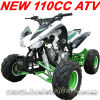110CC Quad Bike. Kid ATV (MC-316)