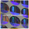 Laser Multi-Effect Hologram Sticker Made em China (H-089)