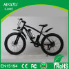 36V 500W Fat Snow Electric Bicycle with Rear Powered DC Motor