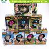 Factory Supply Children Water Dinosaur Eggs Animals Growing Toys