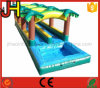 Customized Inflatable Slip N Slide for Sale
