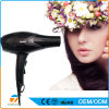Professional AC Motor Hair Dryer Travel Salon