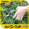 Garden Hand Tool Gardening Scissor Carbon Steel Flower Scissor
