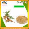 Natural Radix Pueraria Mirifica Powder