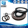 Viton/FKM Tc Double Lip Oil Seal Tb NBR Oil Seal