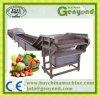 Green Vegetables Washing & Blanching Processing Line