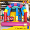 Outside Toy Rainbow Inflatable Standard Slide (AQ914)