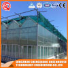 Multi-Span Steel Structure PC Sheet Greenhouse
