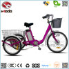 Electric City Tricycle for Adult with Shimano 6 Speed