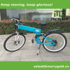 Big Folding Electric Bike with Hidden Battery