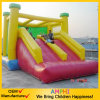Power Lion Inflatable Slide Animal Slide for Party Use