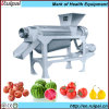 Mini Industrial Carrot and Coconut Juice Extractor