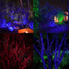 Automatic Play Strobe Dynamic Garden Laser Light Moving Motion Laser Lighting Projector for Outdoor Garden Christmas Tree