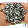 All Types M6 M8 M10 Zinc DIN 934 DIN985 Hex Head Nut Fastener in Carbon Steel