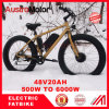 "20"" 26"" Fat Tire MID Drive Electric Bike 750W Brushless"