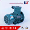High Voltage AC Explosion Proof Asynchronous Electric Motor