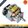 Jiangmen 100 Watts AC Motor