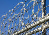 Competitive Price with Best Selling Concertina Razor Wire Cbt 65