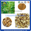High Quality Liquorice P. E. Glabridin 40% for Health Supplement