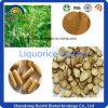 High Quality Liquorice P. E. Glabridin 40% for Health Supplement