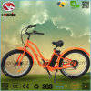 500W Fat Tire Electric Beach Bicycle Muse for Adult