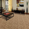 Chu Yun - Polypropylene Bcf Organic Wall to Wall Carpet