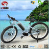 Powerful 350W Electric Motor Bike Fat Tire Bicycle