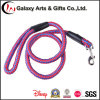 China Factory Wholesale Top Quality Dog Leash with Carabiner Hook