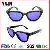 Metal Hinge Star Pattern Denim Material Frame Fashion Sun Glasses