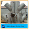304 /316 Stainless Steel Pipe Fitting Lateral Y Tee Joint