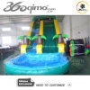 18' Inflatable Wet and Dry Slide with Pool (BMWS16)