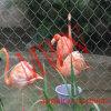 Rope Enclosure Mesh for Animal