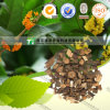 Manufacturer Supply Herb and Cosmetic Cassia Twig