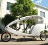 Leisure Electric Rickshaw for The Japanese Market (DCQ500DQZK)