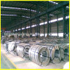Hot Dipped Galvanized Steel Coil/Plate