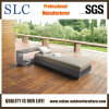 Pool Loungers/Lounge Chair/Rattan Chaise Lounge (SC-B8914)