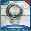 Xtsky High Quality Needle Roller Bearing (RNAV4006)