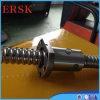 High Efficiency Ball Screw with Nut and Brackets