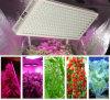 Horticulture 1200 Watt LED Grow Light for Indoor Plant Growing