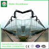 Plastic Film Covered Arch Greenhouse