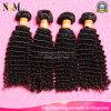 Weight 95-105g Pack/10PCS in a Kilo Brazilian Curly Human Virgin Hair