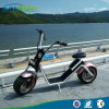 Ecorider Harley Scooter 2 Wheel Electric Scooter Motorcycle 1500W EEC