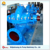 Corrosion Resistant Double Suction Acid Chemical Pump